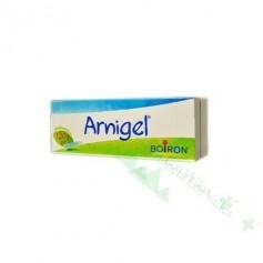 ARNIGEL 120 G (ARNICA GEL)